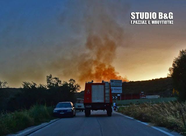 Μπαράζ πυρκαγιών στην Ερμιονίδα Αργολίδας