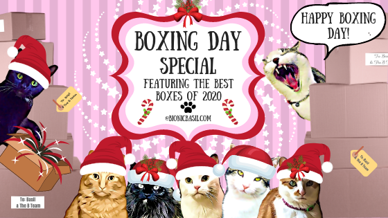 Boxing Day Special Banner ©BionicBasil® 2020