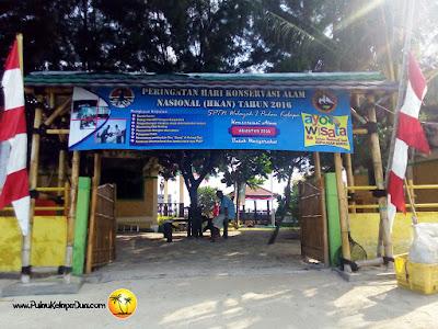Penangkaran Penyu Tukik Pulau Kelapa Dua, Kepulauan Seribu Utara