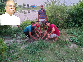 #JaunpurLive : सृष्टि की रक्षा के लिए वृक्षारोपण आवश्यक– पं. लल्लन तिवारी