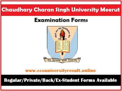 CCS University Exam Form Online 2021