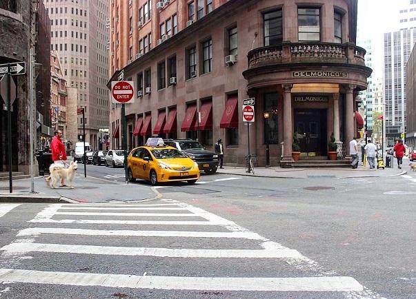 Vad betyder förkortningarna för New Yorks stadsdelar?