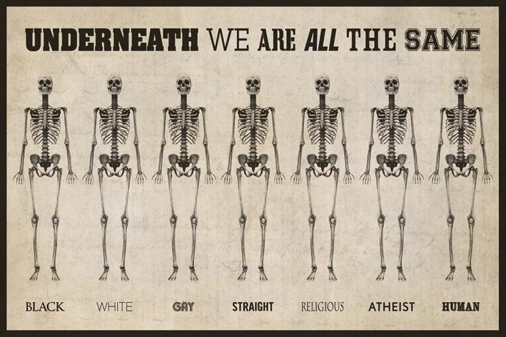 skeleton underneath we are all the same