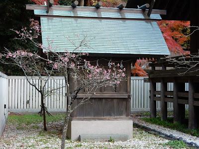 鎌倉宮南方社