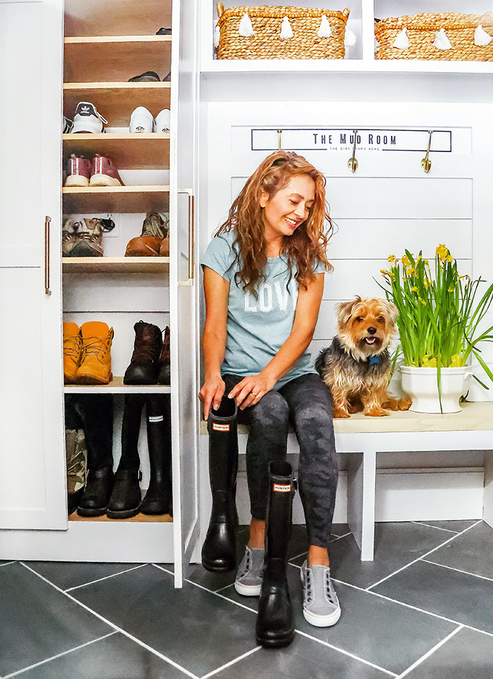 Yorkshire Terrier - Louie