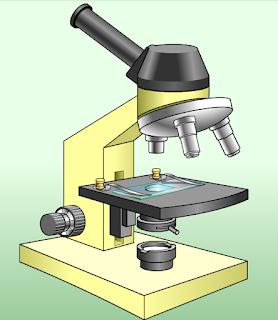 http://recursos.cnice.mec.es/biosfera/alumno/1ESO/clasica/imagenes/Microscopio.swf