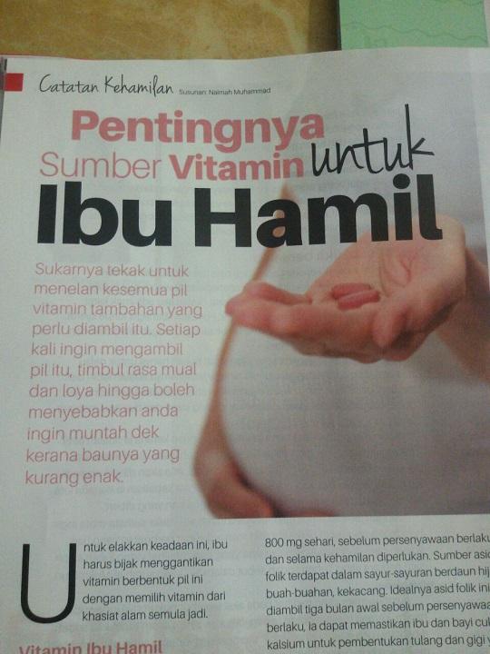 Image result for blog kesihatan ibu hamil