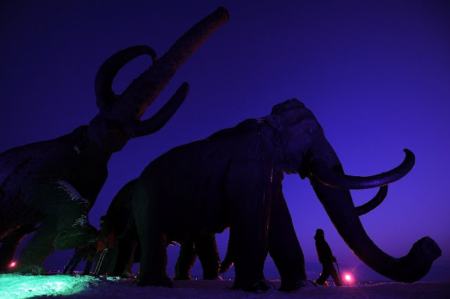 Bioscience firm claims will bring back extinct woolly mammoth