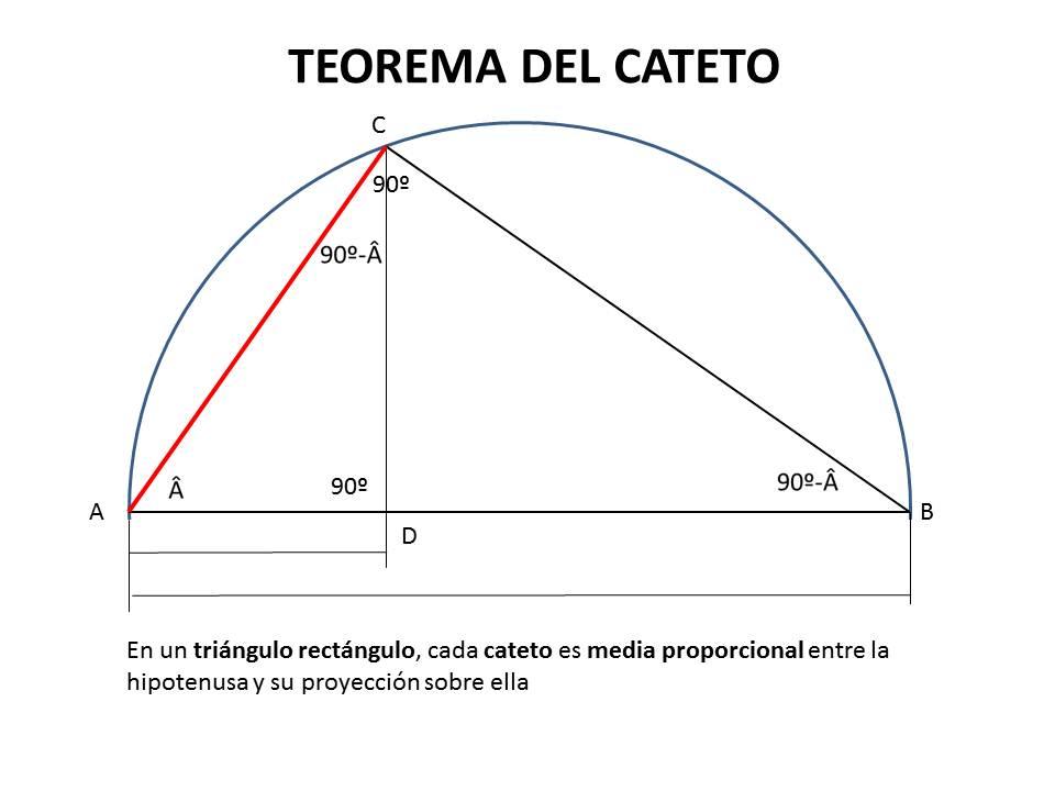 Dibujo Técnico 1º Bach.: PROPORCIONALIDAD: TEOREMAS DE LA ALTURA Y ...
