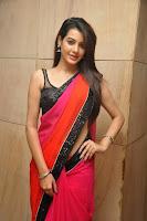 HeyAndhra Deeksha Panth Latest Saree Photo Shoot HeyAndhra.com