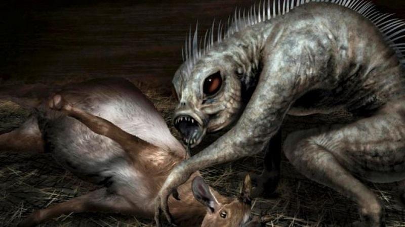 Chupa-cabra: Tudo Que Você Gostaria de Saber
