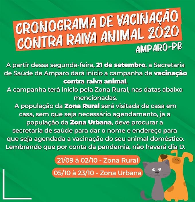 Campanha de Vacinação contra raiva animal começa nessa segunda-feira em Amparo