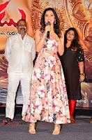 Rakshaka Bhatudu Telugu Movie Pre Release Function Stills  0011.jpg