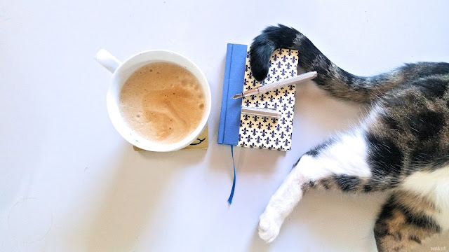 nauli planner with cat and coffee