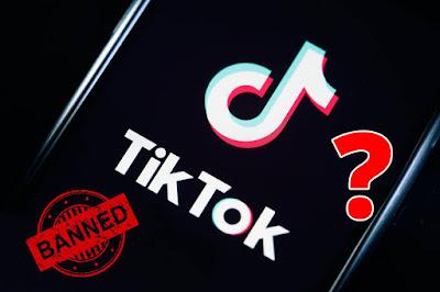 Why India banned TikTok?
