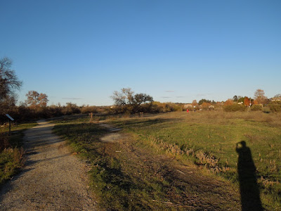 Site of Proposed Parking Lot at Larry Moore Park, © B. Radisavljevic