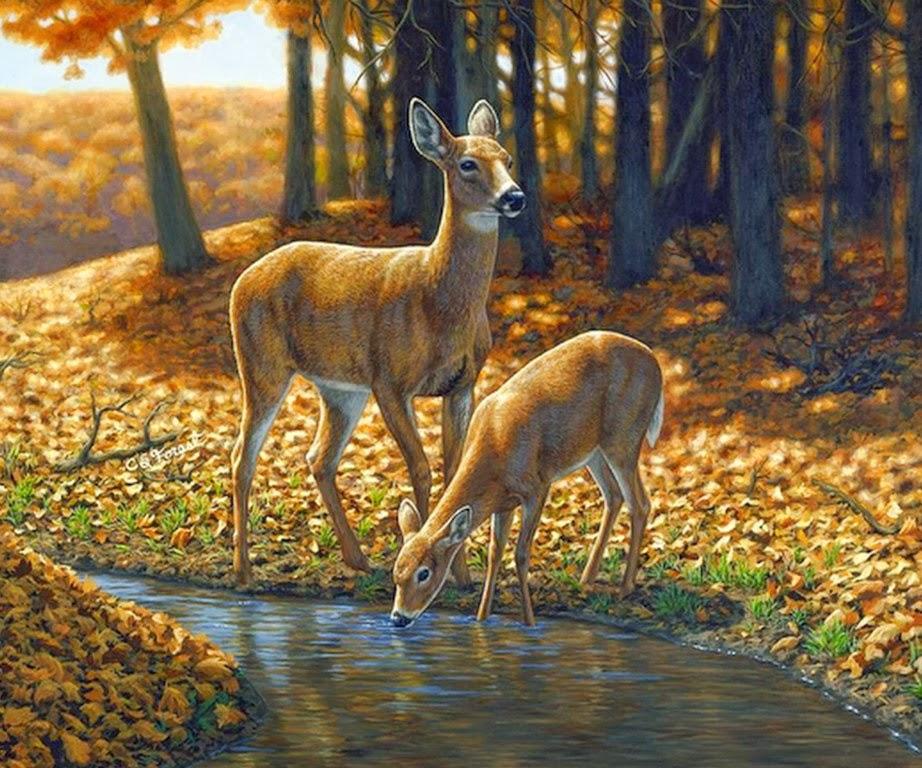 Imágenes Arte Pinturas: Paisajes con Cascadas y Animales ... - photo#16