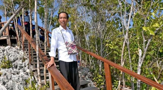 Ganti Libur Idul Fitri, Jokowi Bakal Gratiskan Tempat Wisata