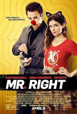 Sinopsis film Mr. Right (2015)