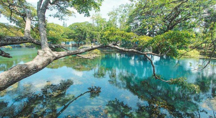 Pesona Danau Ronggojalu di Probolinggo