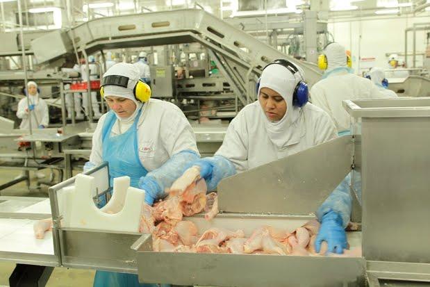 Fraudadores produziam carne com substâncias cancerígenas, diz delegado da PF