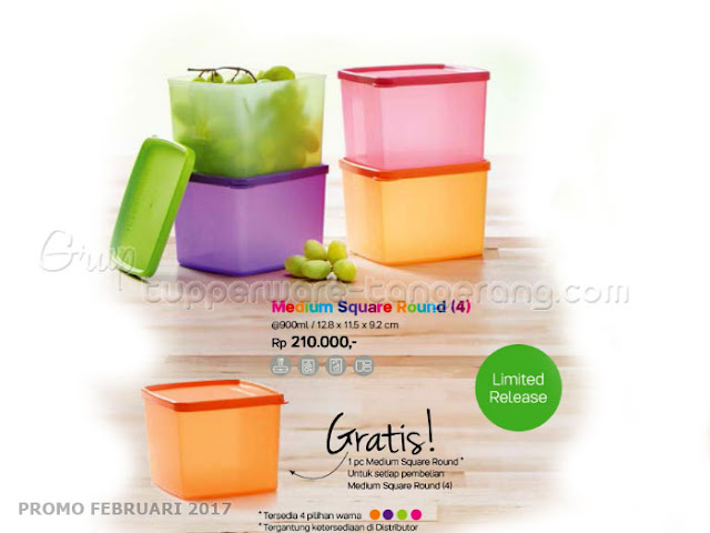 Medium Square Round Tupperware Promo Februari 2017