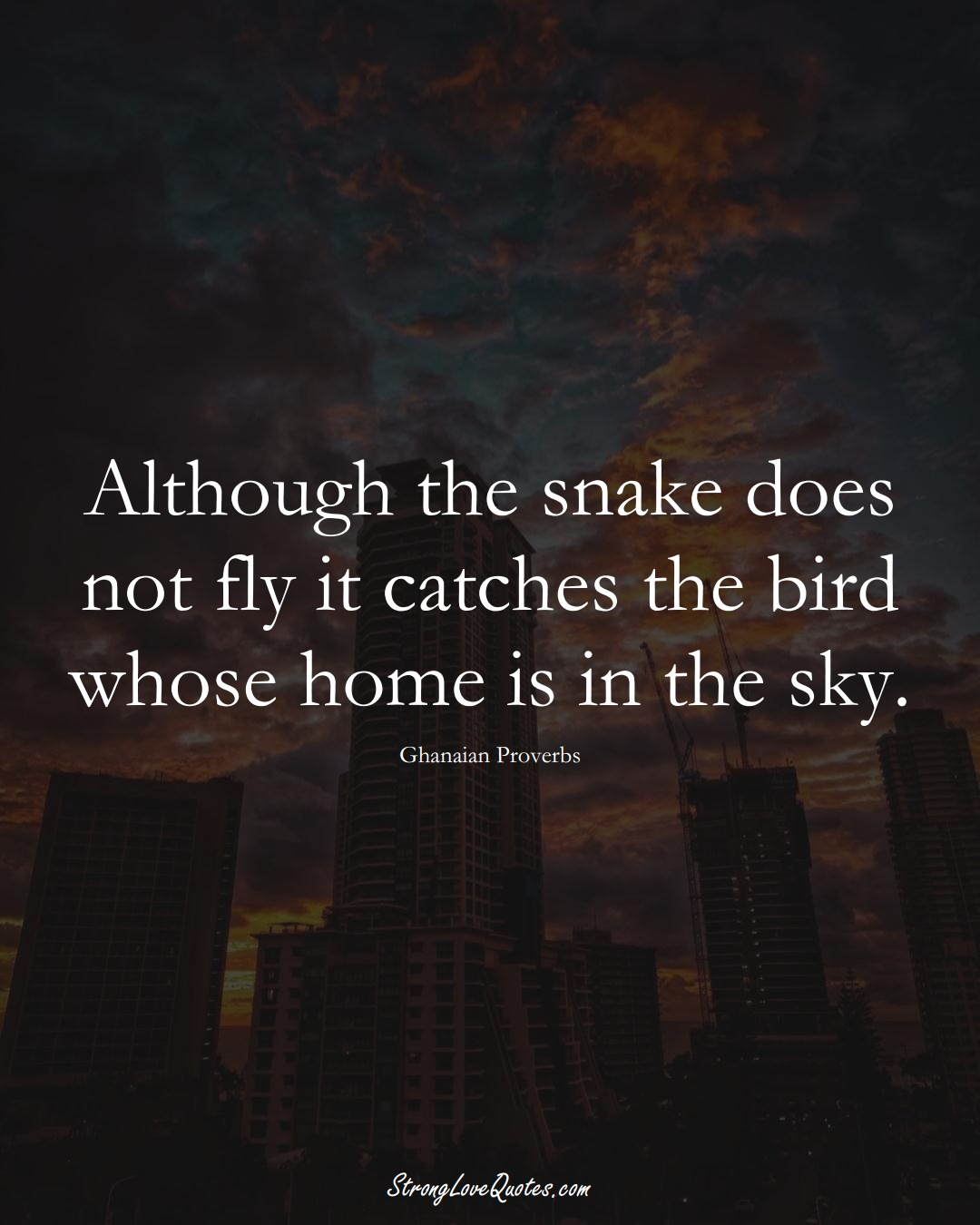 Although the snake does not fly it catches the bird whose home is in the sky. (Ghanaian Sayings);  #AfricanSayings