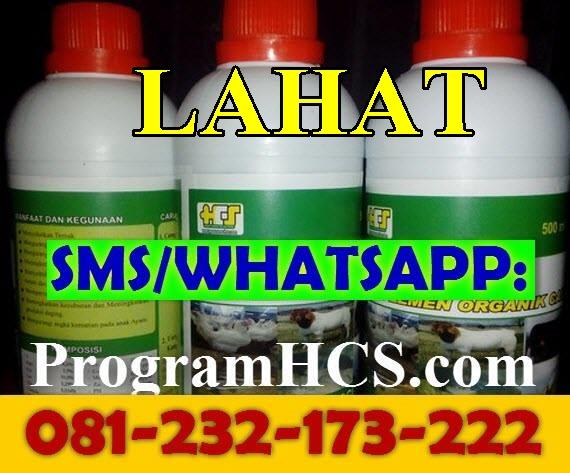 Jual SOC HCS Lahat