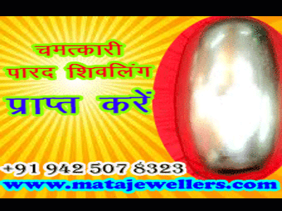 best parad shivling seller in india