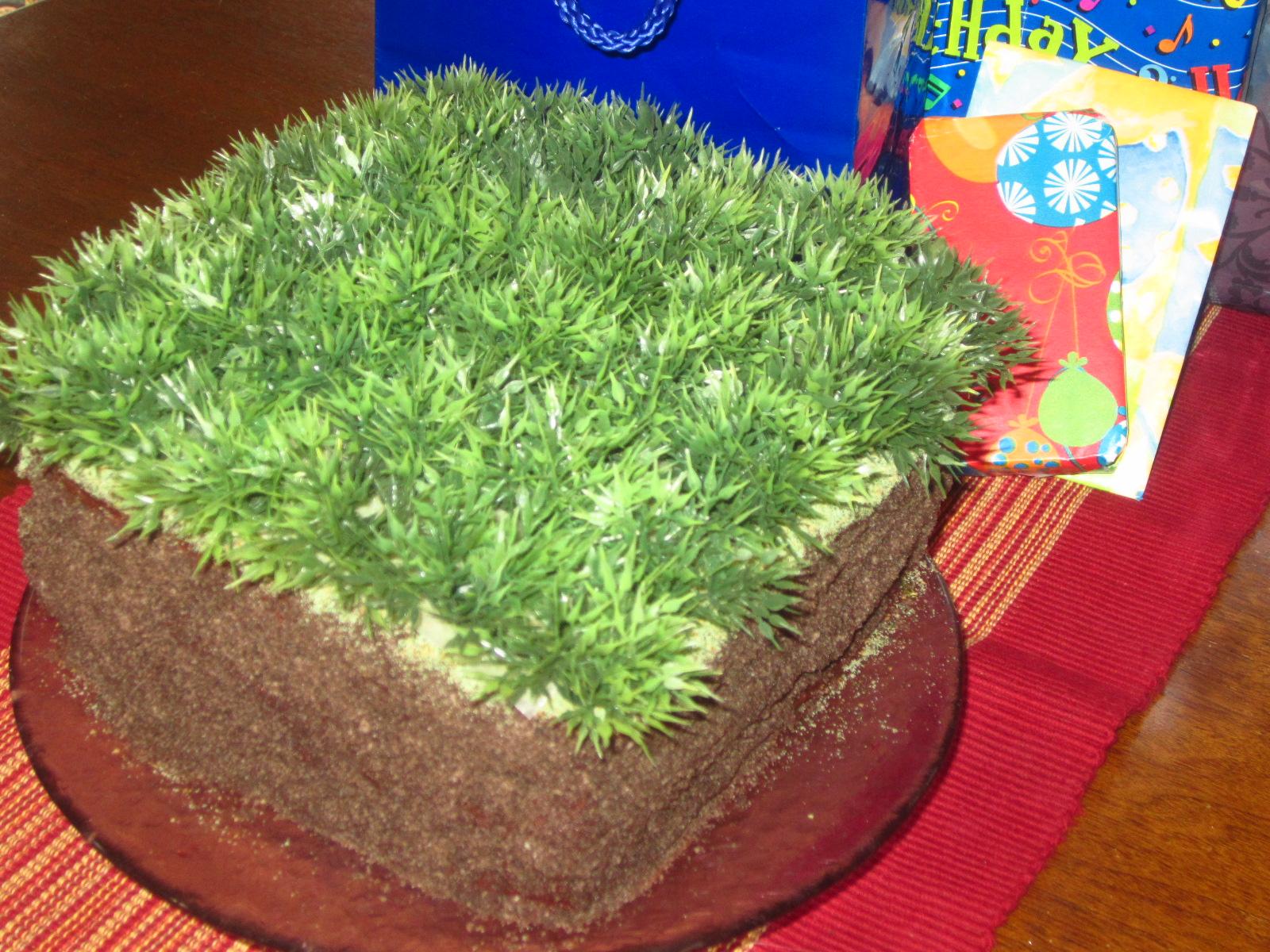 Minecraft Dirt Block Cake Recipe