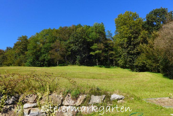 Sonniger-Herbsttag-Steiermarkgarten