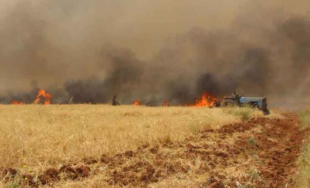 الحرائق غير مشمولة في صندوق الجفاف والكوارث الطبيعية .
