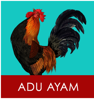 Download Game Adu Ayam v1.0 Terbaru 2017