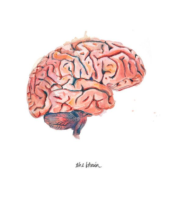Prescription: Better Mental Health!