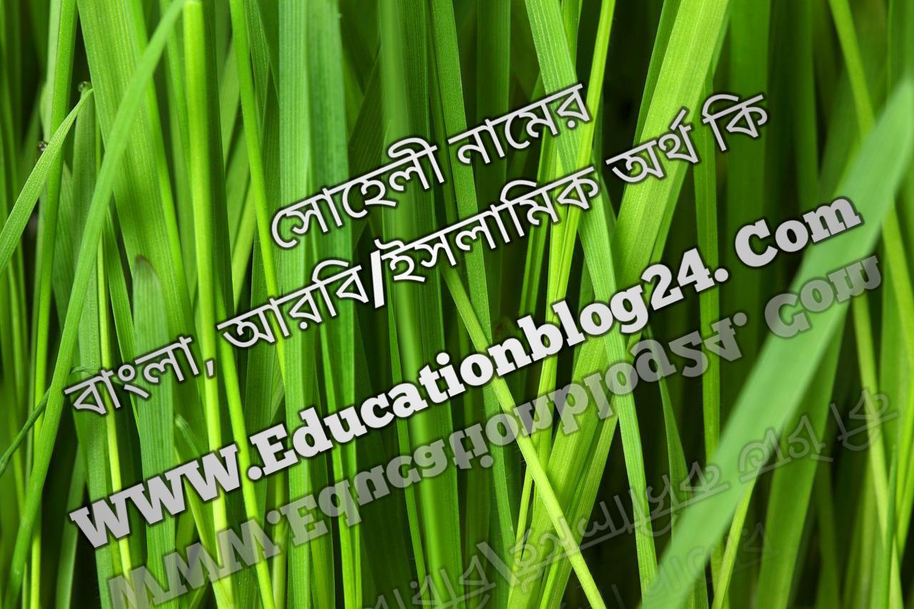 Soheli name meaning in Bengali, সোহেলী নামের অর্থ কি, সোহেলী নামের বাংলা অর্থ কি, সোহেলী নামের ইসলামিক অর্থ কি, সোহেলী কি ইসলামিক /আরবি নাম