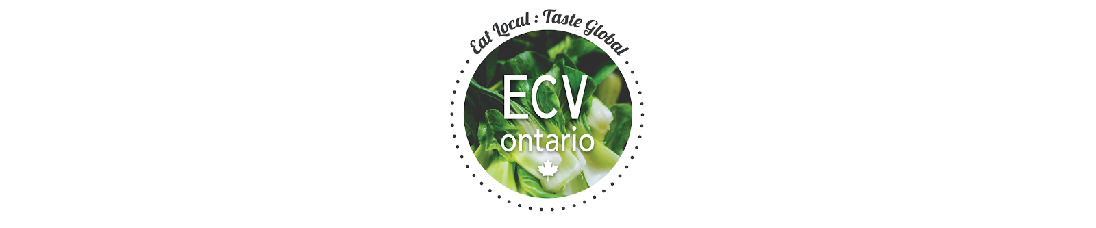 ECV Ontario: Little Mogadishu in the Greater Toronto Area (GTA)