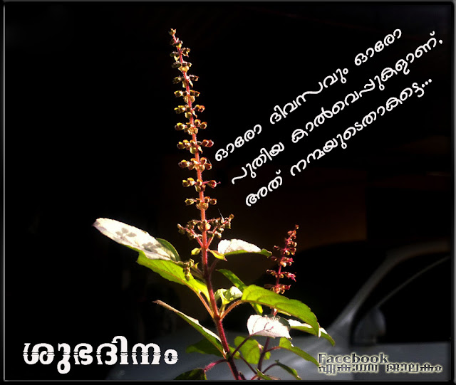 Malayalam Love Pudse Get Lost: Lovely Quotes For You: January 2013