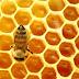 O mel é o único adoçante saudável, mesmo para pessoas com diabetes.