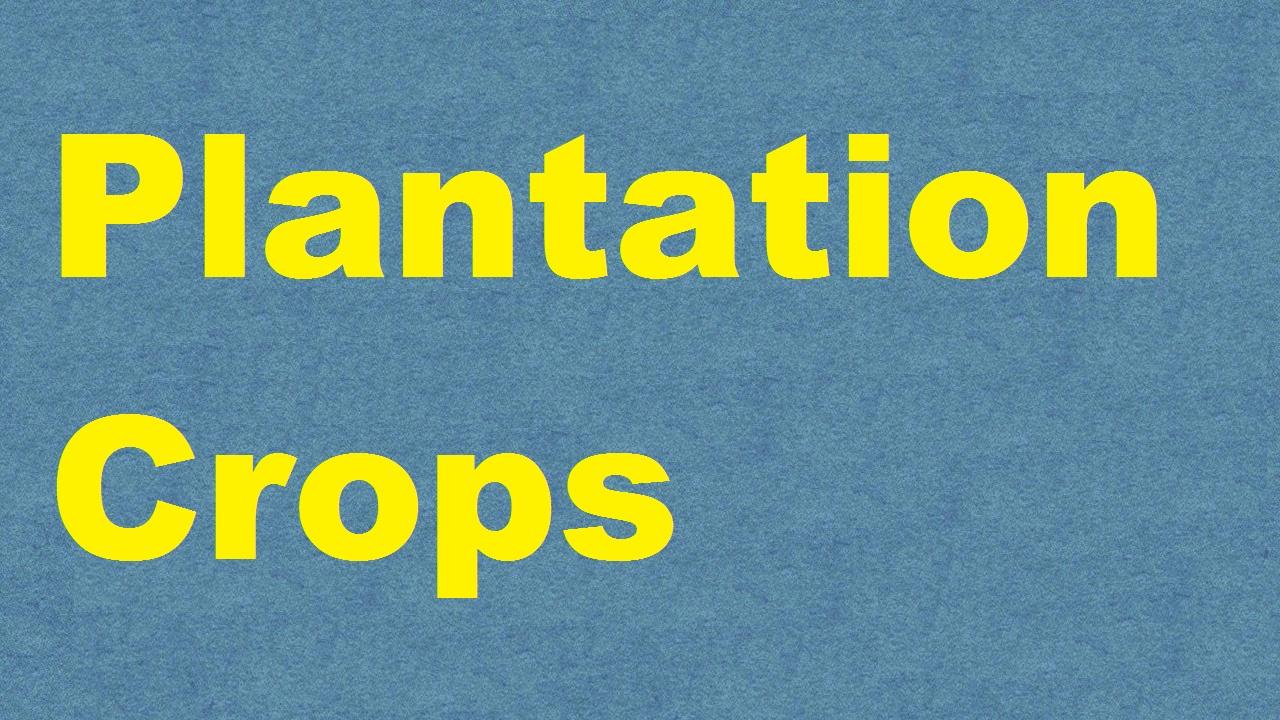 Plantation Crops ICAR E course Free PDF Book Download e krishi shiksha