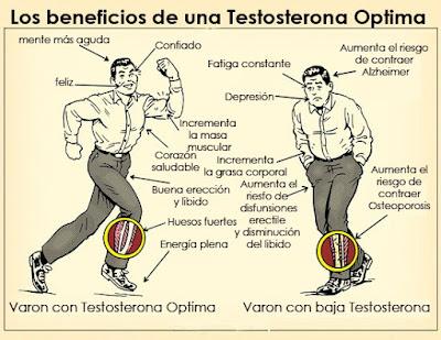 https://canalelsalvador.wordpress.com/2014/09/24/plasticos-disminuyen-los-niveles-de-testosterona-en-los-hombres-mujeres-y-ninos/