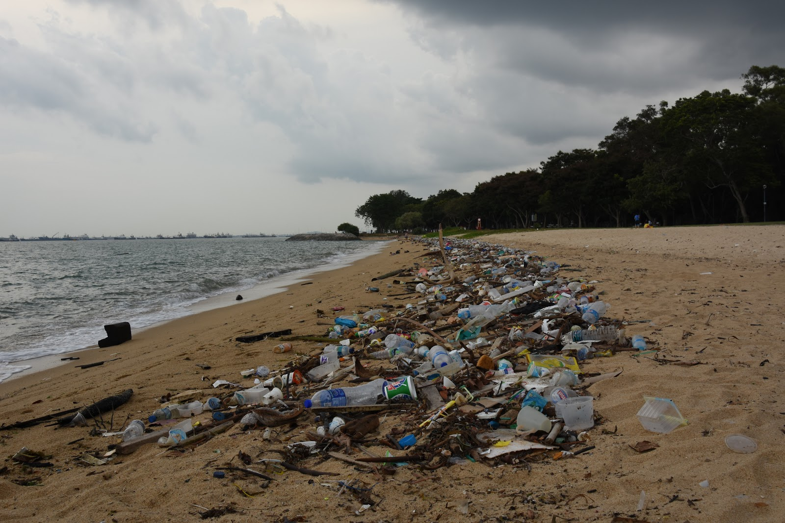 Singapore beach plastic waste pollution