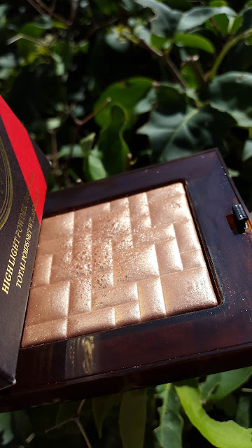 Bobbi Brown High Light Powder 'Bronze Glow' www.modenmakeup.com
