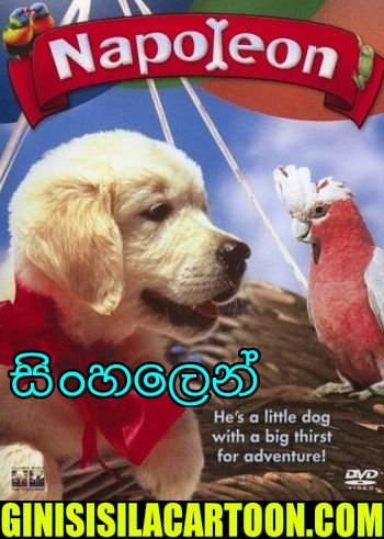 Sinhala Dubbed - Napoleon