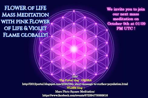 Кобра: Краткое послание населению поверхности от 6 окт. 2020 (Медитация 9окт в 16:09 МСК) Flower%2Bof%2BLife