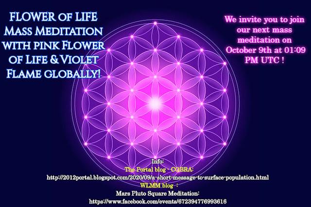 生命之花集體冥想