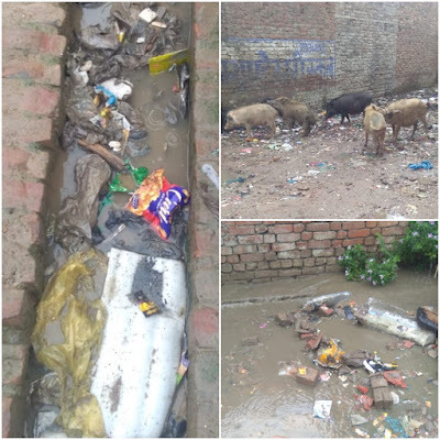 Lucknow Dirty Colony Problem For Public Health Issues Uttar Pradesh