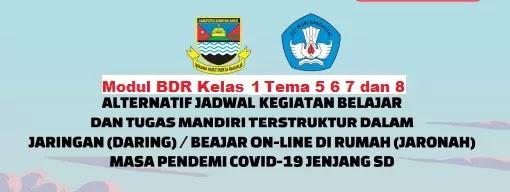 Modul BDR Kelas 1 Tema 5 6 7 dan 8