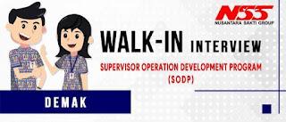 Lowongan Kerja Walk In Interview Nusantara Saki Group untuk posisi