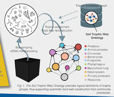 Figure 1 excerpt from soil ontologies poster, with network labels tunred black.