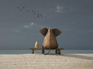 Слон и Кот на лавочке наблюдают за птицами